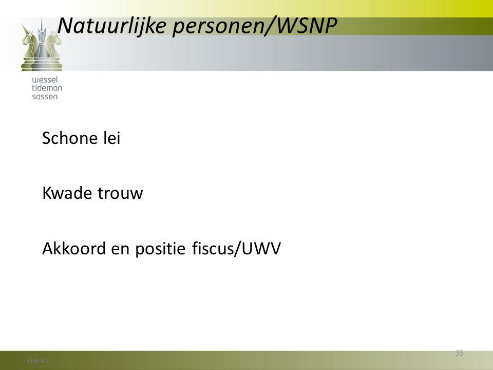 Natuurlijke personen/WSNP