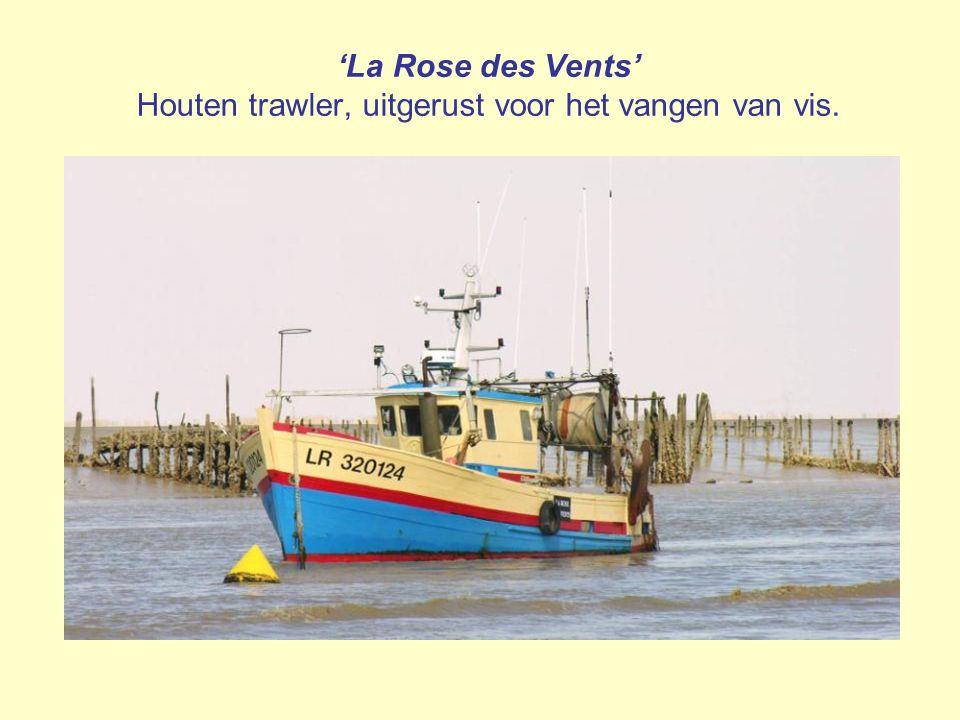 'La Rose des Vents' Houten trawler, uitgerust voor het vangen van vis.