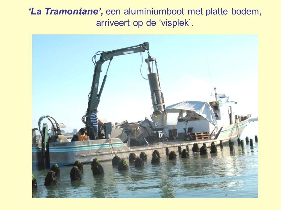 'La Tramontane', een aluminiumboot met platte bodem, arriveert op de 'visplek'.