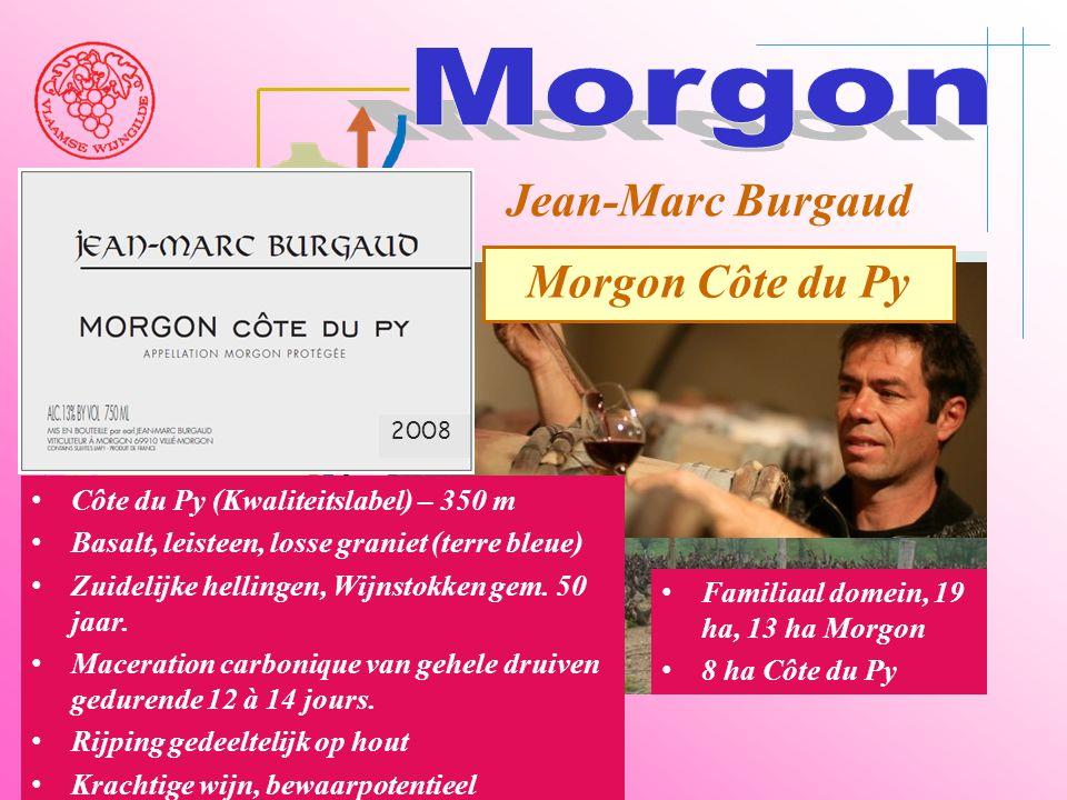 Morgon Jean-Marc Burgaud Morgon Côte du Py
