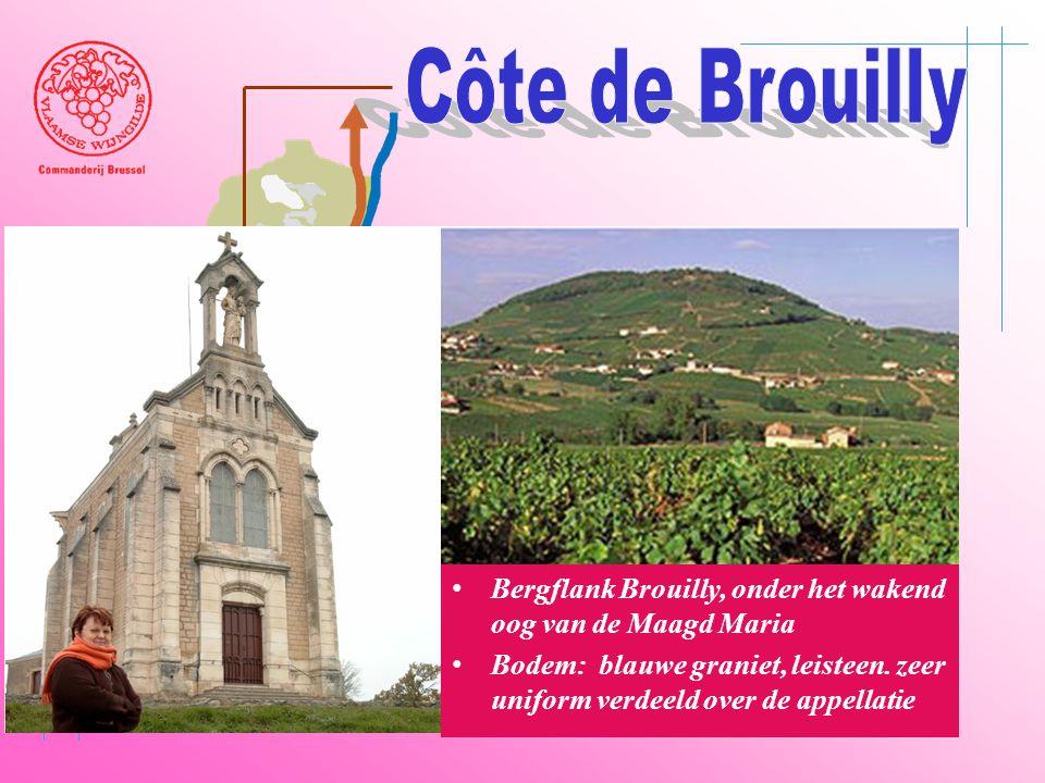 Côte de Brouilly Beaujeu. Belleville. Saône. Villefranche. Bergflank Brouilly, onder het wakend oog van de Maagd Maria.
