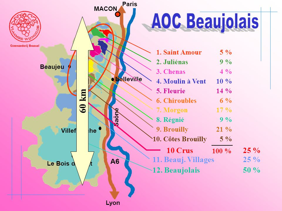 AOC Beaujolais 60 km 10 Crus 25 % 11. Beauj. Villages 25 %