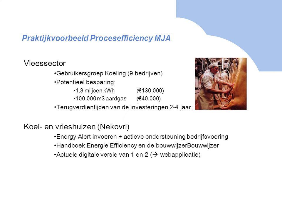 Praktijkvoorbeeld Procesefficiency MJA