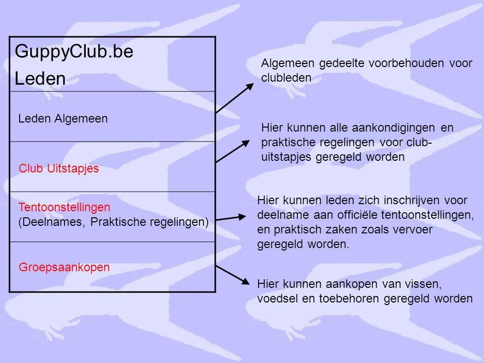 GuppyClub.be Leden Algemeen gedeelte voorbehouden voor clubleden