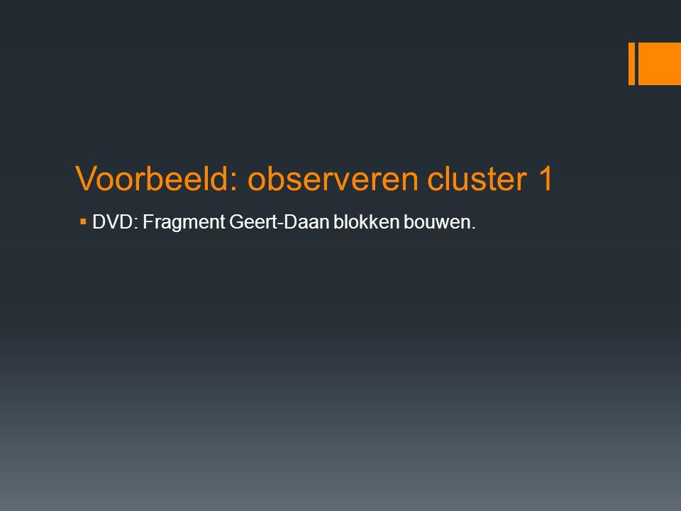 Voorbeeld: observeren cluster 1