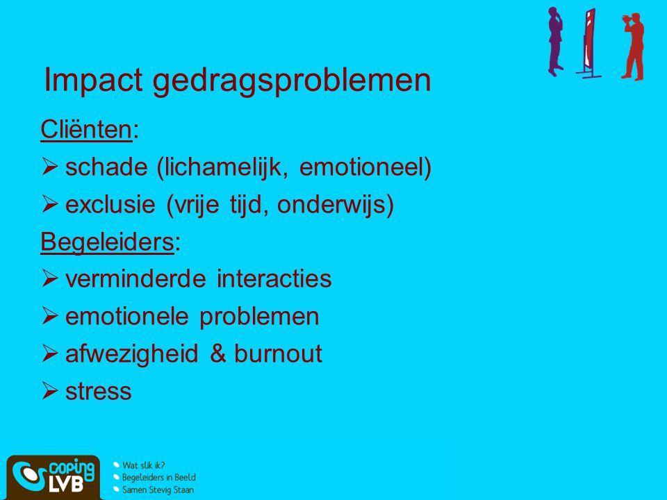Impact gedragsproblemen