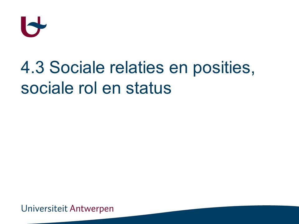 Sociale relaties en posities, sociale rol en status