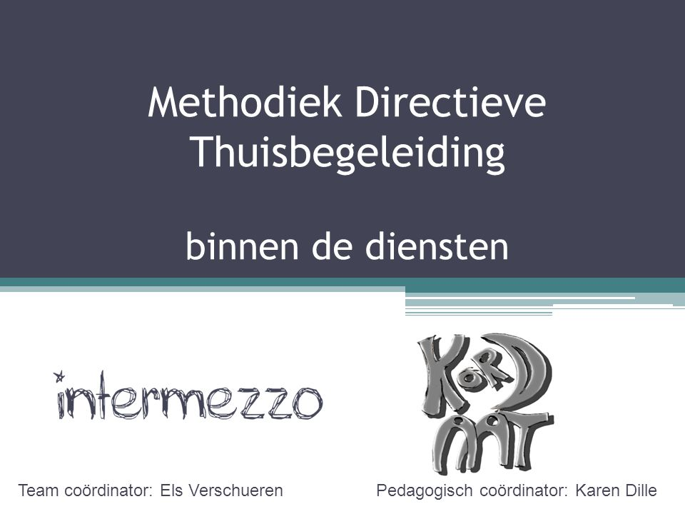 Methodiek Directieve Thuisbegeleiding binnen de diensten