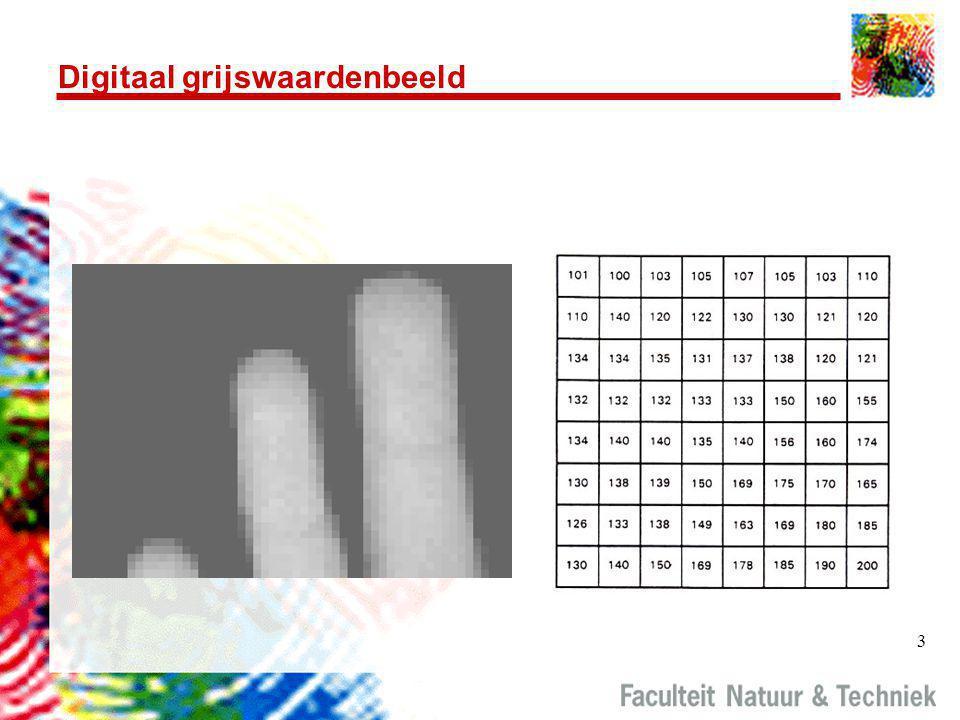 Digitaal grijswaardenbeeld