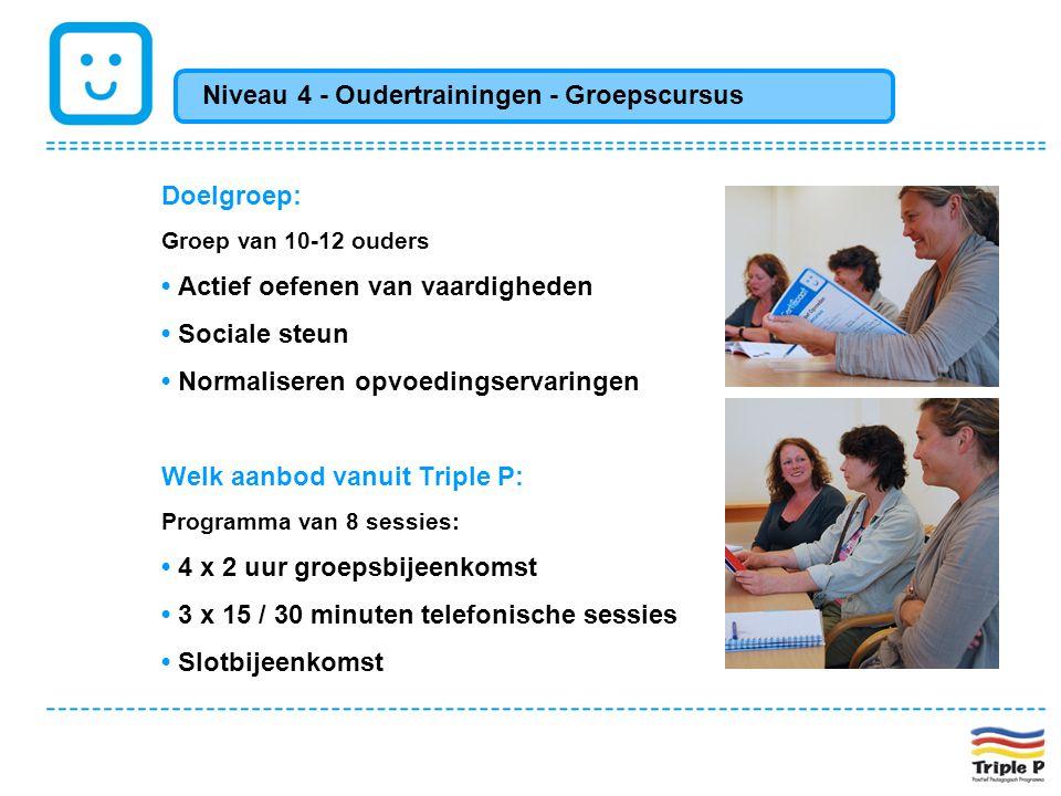 Niveau 4 - Oudertrainingen - Groepscursus