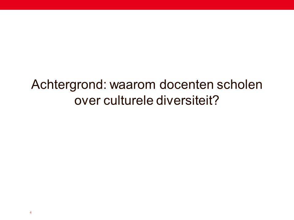Achtergrond: waarom docenten scholen over culturele diversiteit