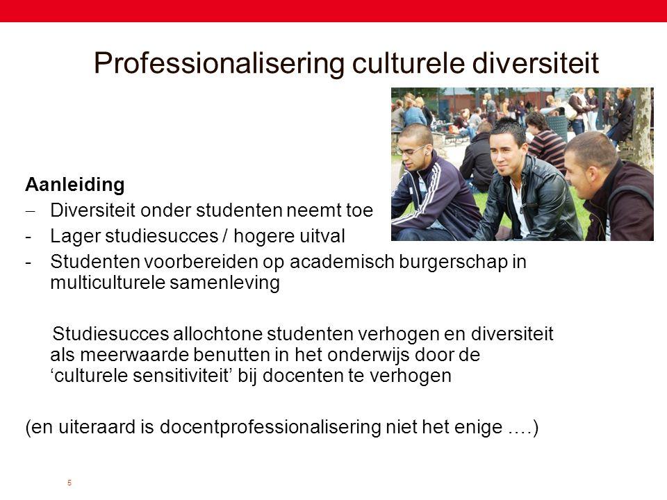 Professionalisering culturele diversiteit