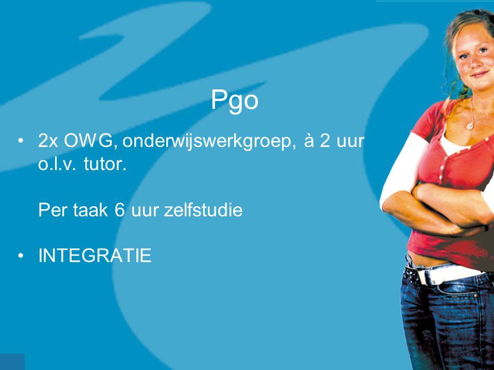 Pgo 2x OWG, onderwijswerkgroep, à 2 uur o.l.v. tutor.