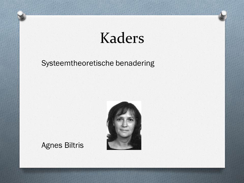Kaders Systeemtheoretische benadering Agnes Biltris