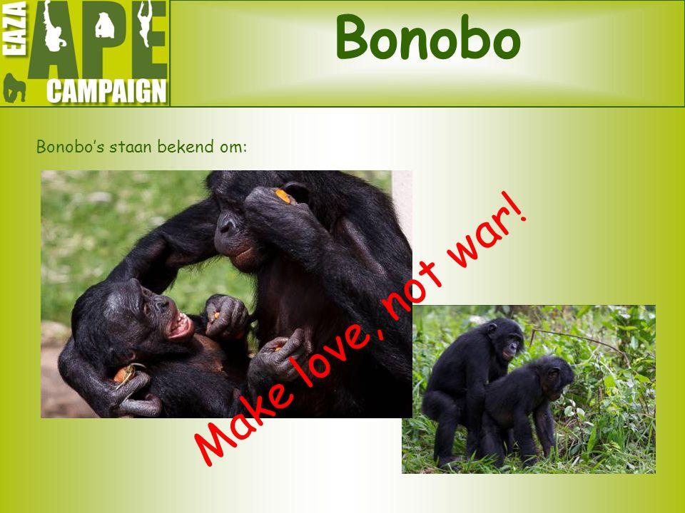Bonobo's staan bekend om: