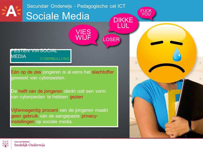 Sociale Media DIKKE LUL VIES WIJF