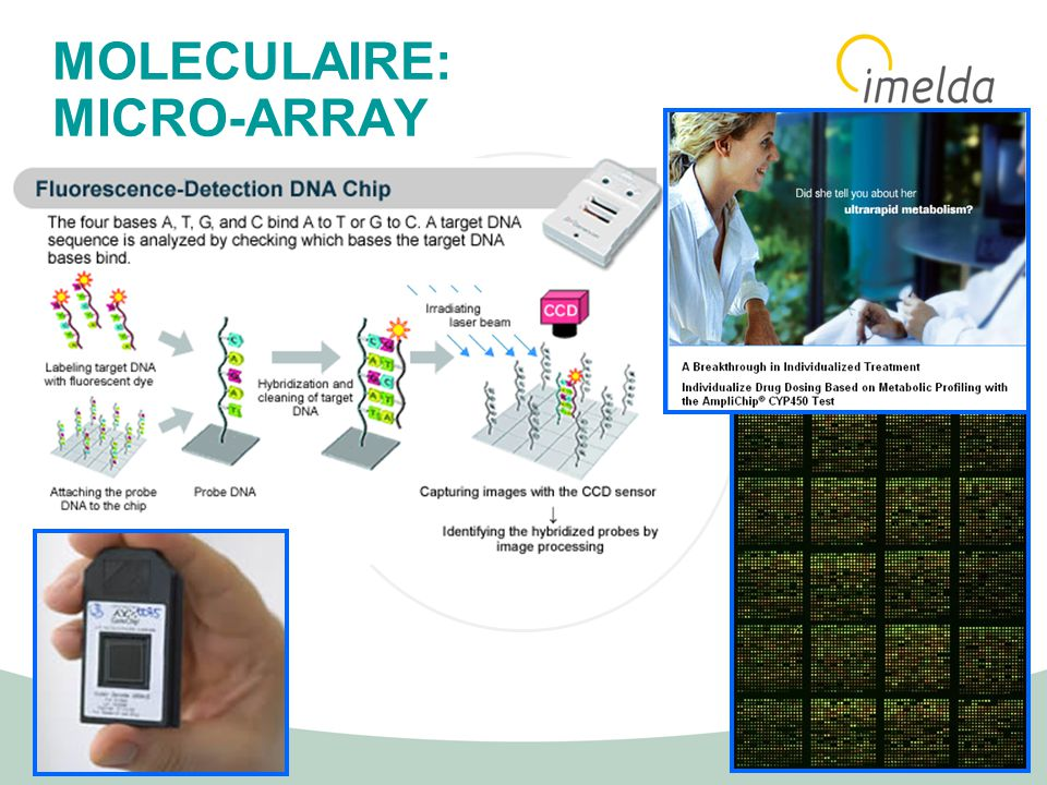 MOLECULAIRE: MICRO-ARRAY