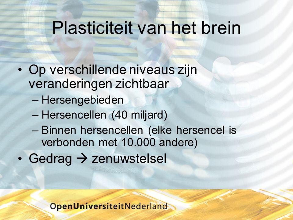 Plasticiteit van het brein