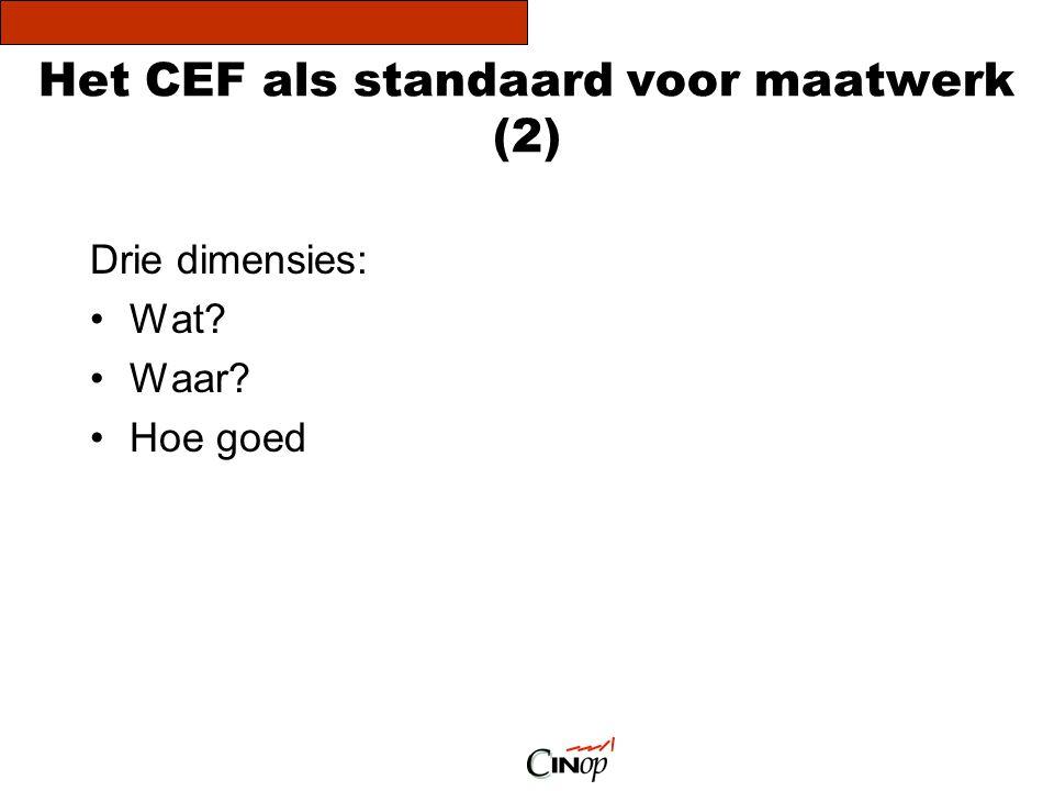 Het CEF als standaard voor maatwerk (2)