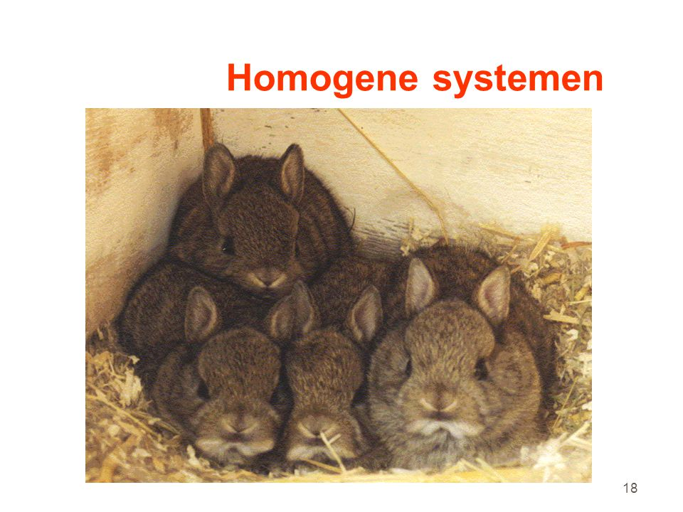 Homogene systemen