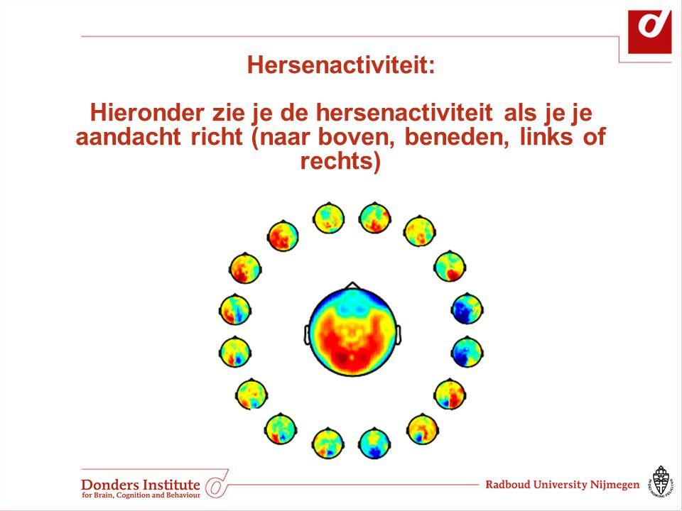 Hersenactiviteit: Hieronder zie je de hersenactiviteit als je je aandacht richt (naar boven, beneden, links of rechts)