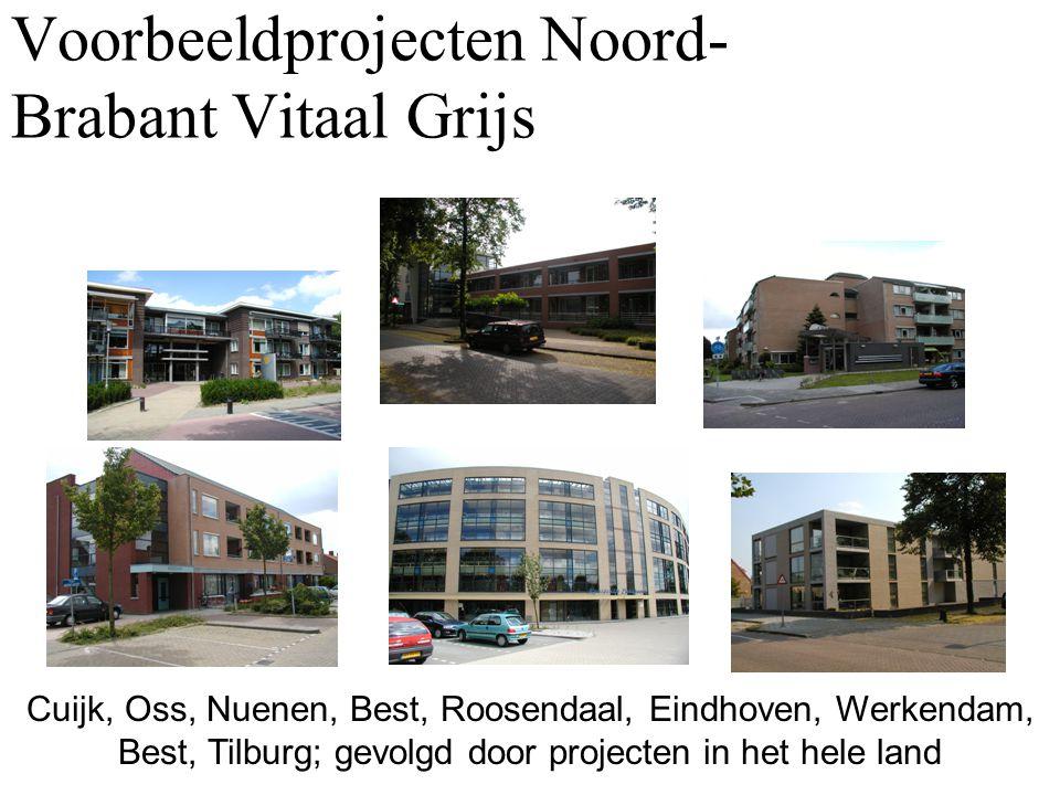 Voorbeeldprojecten Noord-Brabant Vitaal Grijs