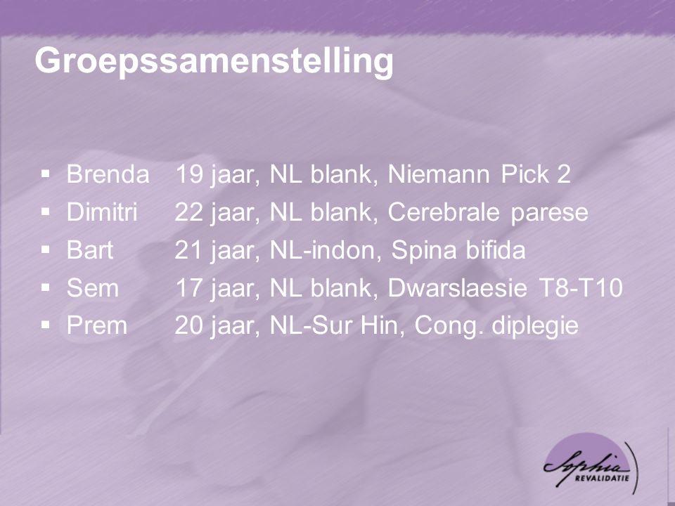 Groepssamenstelling Brenda 19 jaar, NL blank, Niemann Pick 2