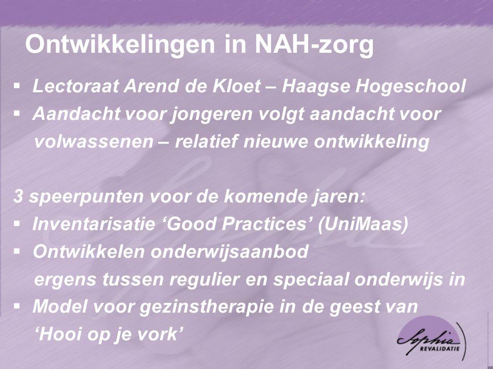 Ontwikkelingen in NAH-zorg