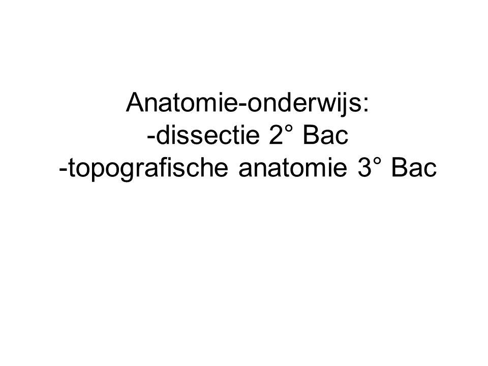 Anatomie-onderwijs: -dissectie 2° Bac -topografische anatomie 3° Bac