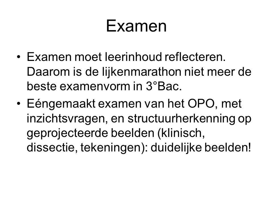 Examen Examen moet leerinhoud reflecteren. Daarom is de lijkenmarathon niet meer de beste examenvorm in 3°Bac.