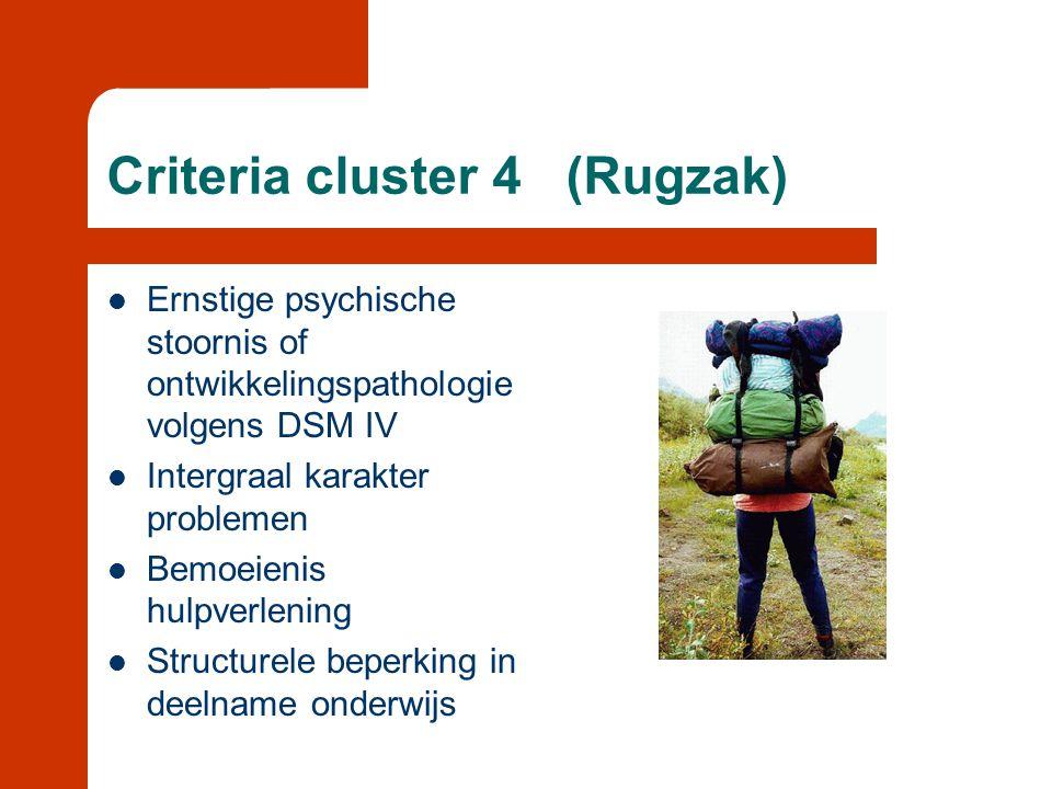 Criteria cluster 4 (Rugzak)