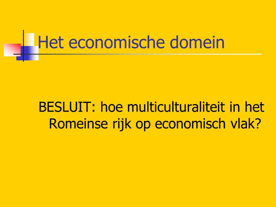 Het economische domein