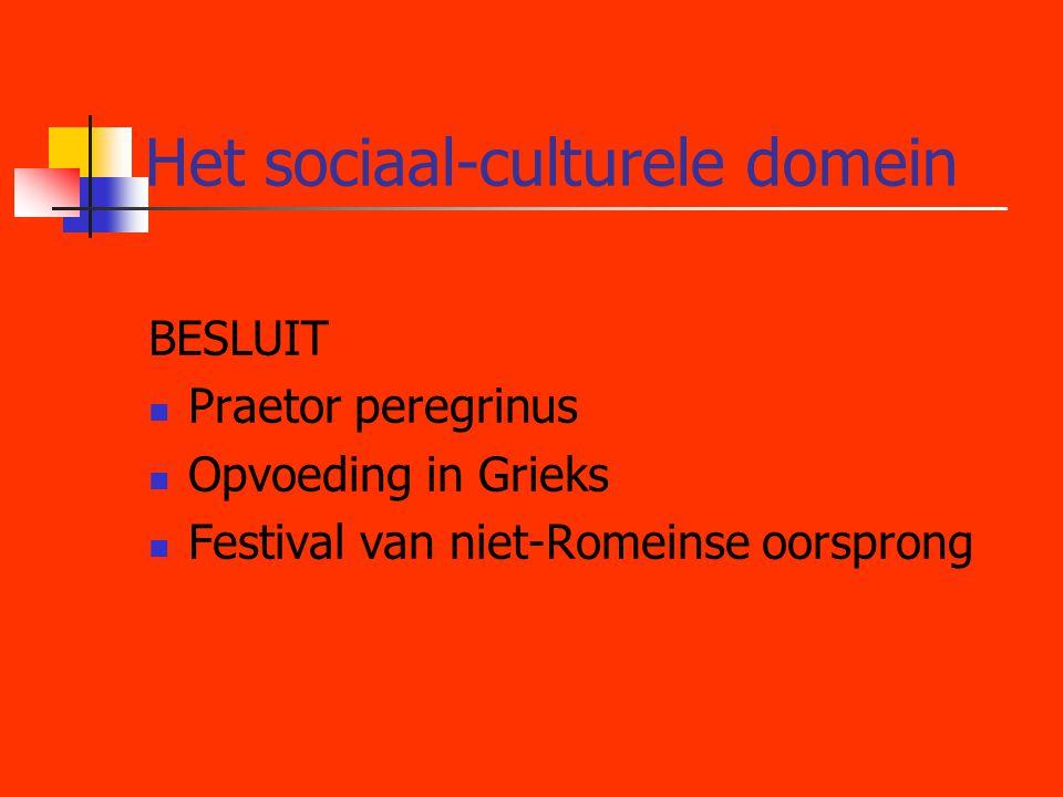 Het sociaal-culturele domein
