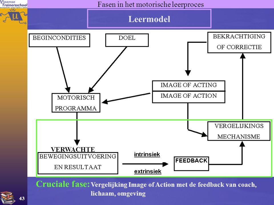 Fasen in het motorische leerproces