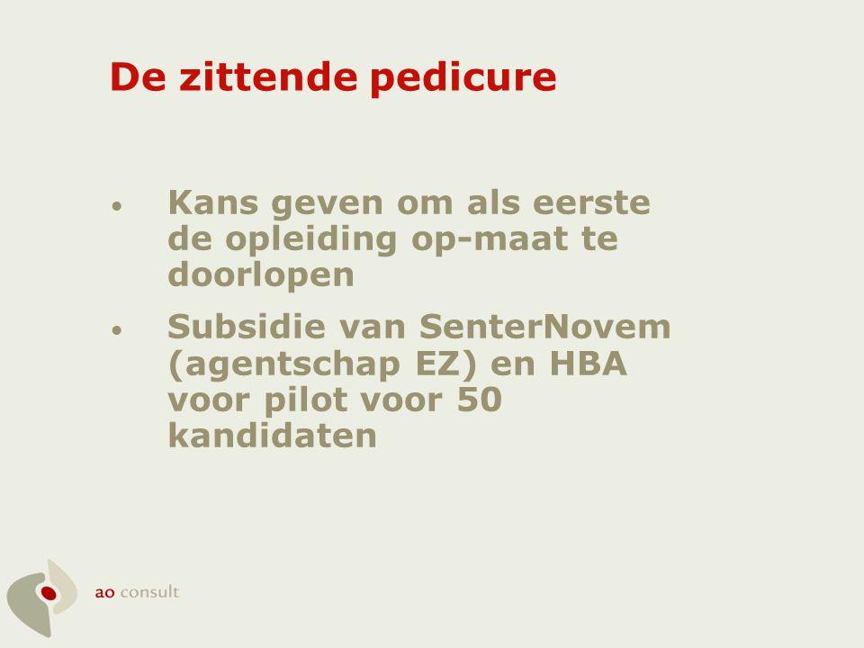 De zittende pedicure Kans geven om als eerste de opleiding op-maat te doorlopen.