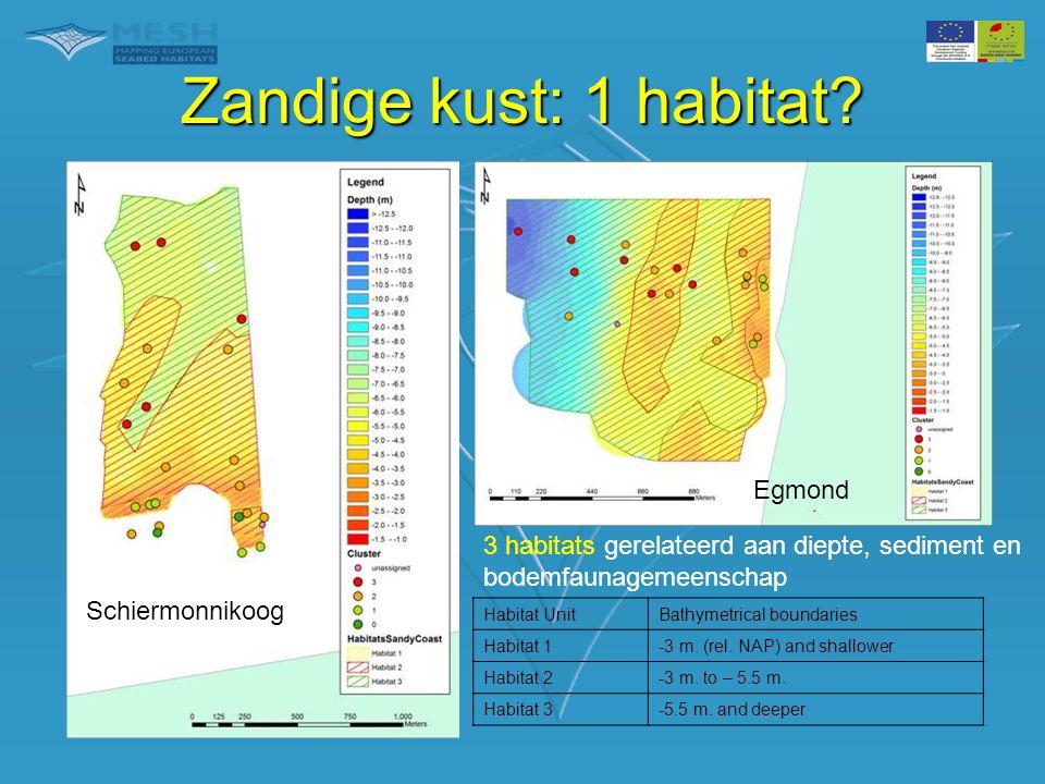 Zandige kust: 1 habitat Egmond