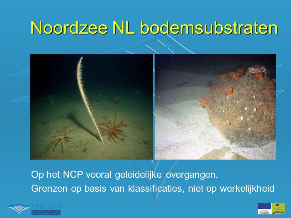 Noordzee NL bodemsubstraten