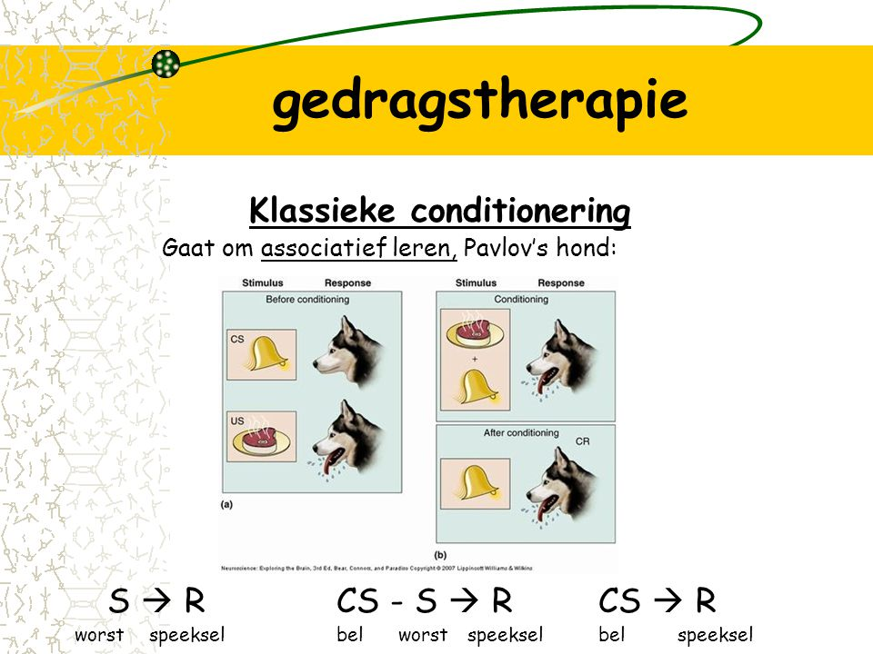 gedragstherapie Klassieke conditionering S  R CS - S  R CS  R
