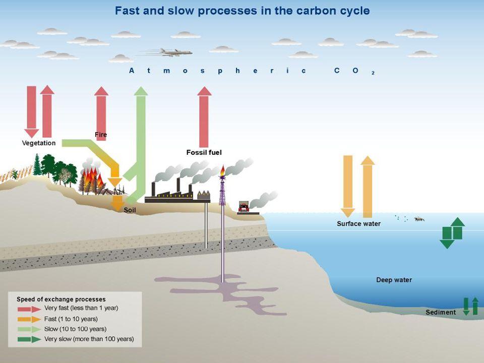 Oorzaken Klimaatverandering >