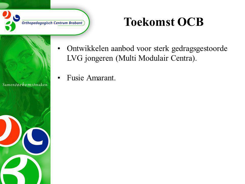 Toekomst OCB Ontwikkelen aanbod voor sterk gedragsgestoorde LVG jongeren (Multi Modulair Centra).
