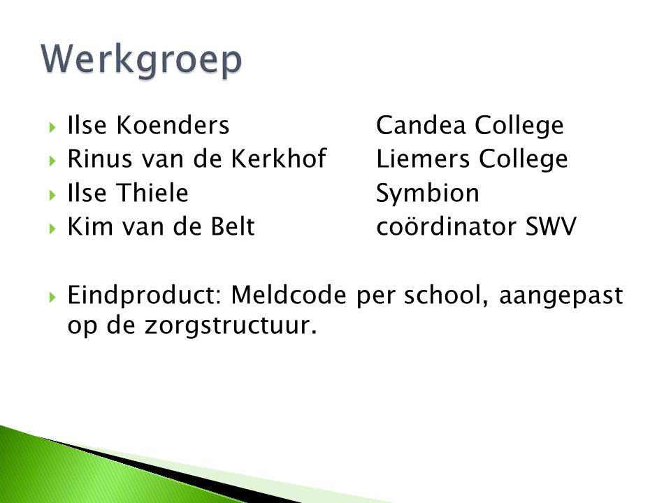 Werkgroep Ilse Koenders Candea College