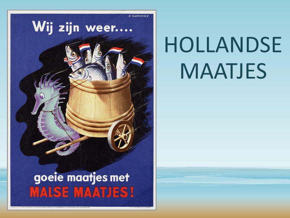HOLLANDSE MAATJES