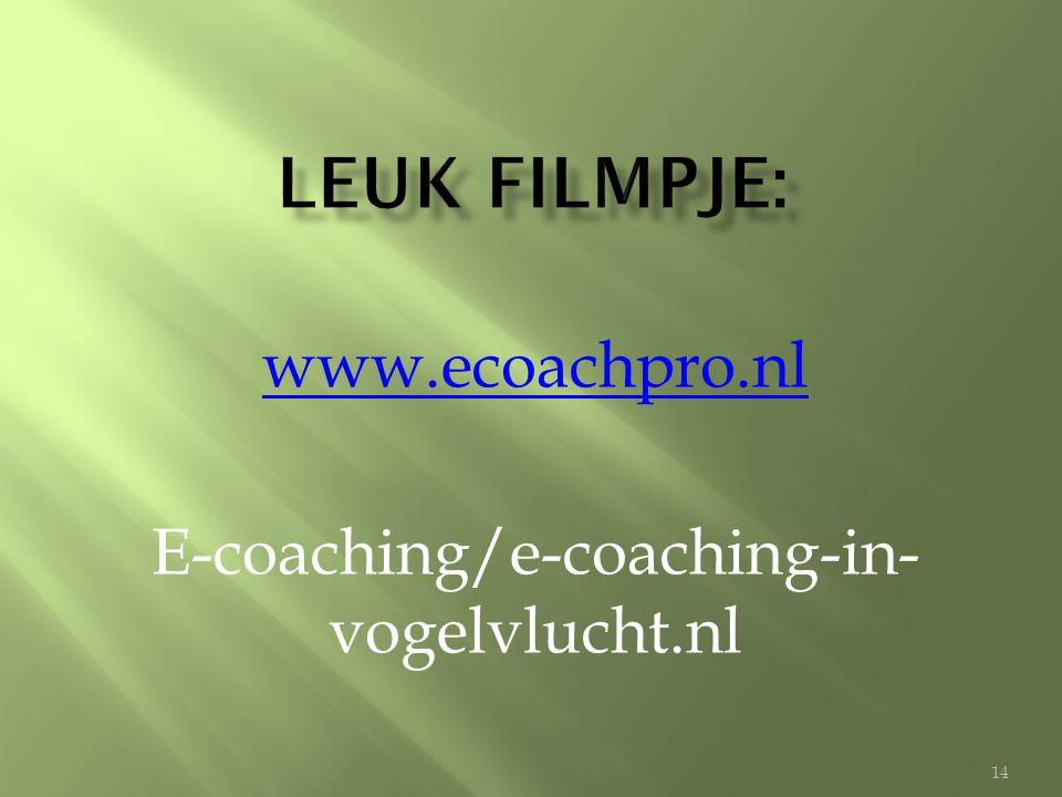 www.ecoachpro.nl E-coaching/e-coaching-in-vogelvlucht.nl