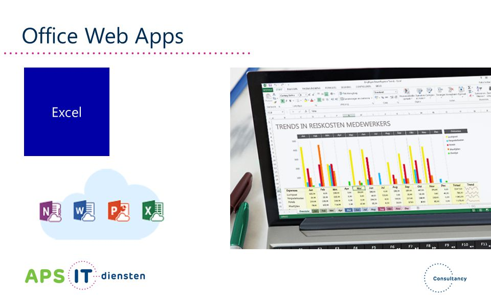 Office Web Apps Excel