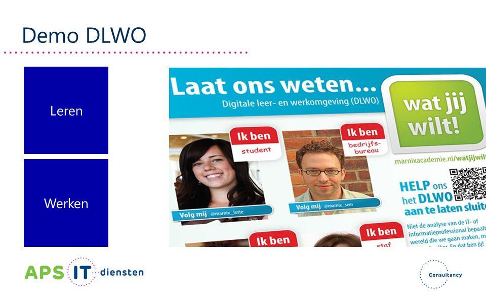 Demo DLWO Leren Werken