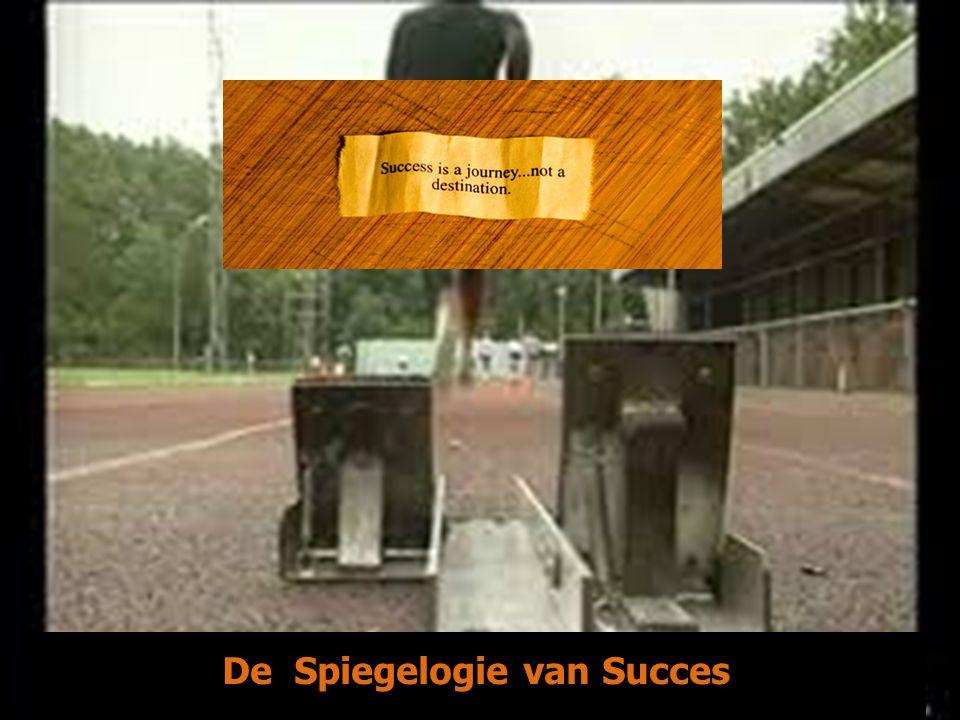 De Spiegelogie van Succes