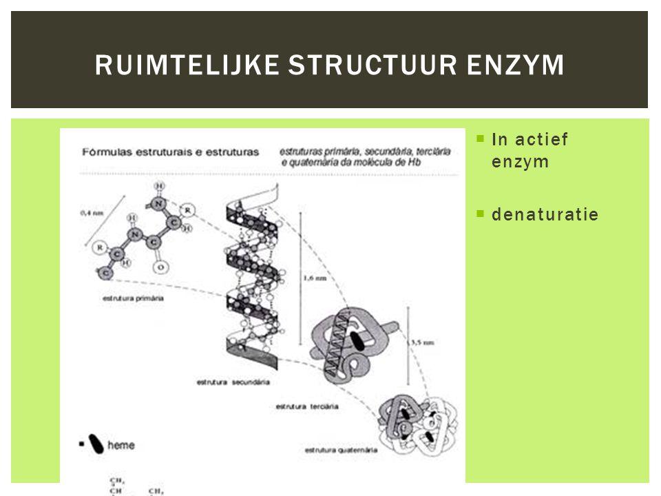 Ruimtelijke structuur enzym