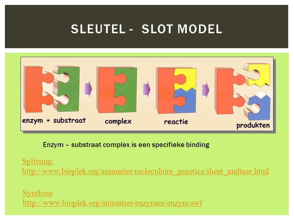 Sleutel - slot model Splitsing: