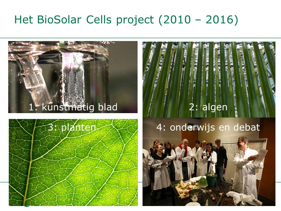 Het BioSolar Cells project (2010 – 2016)