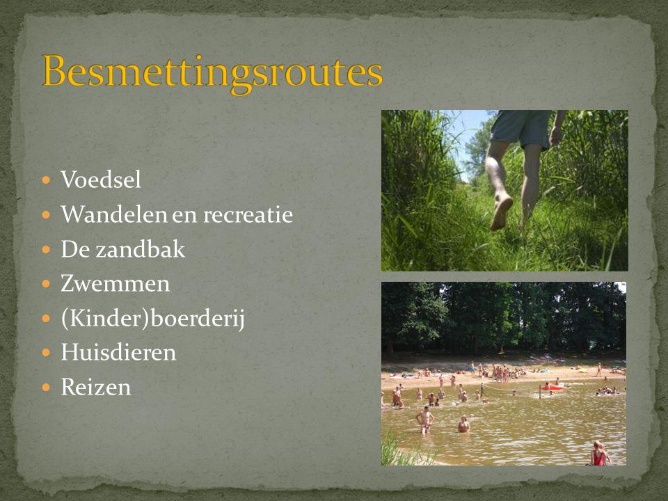 Besmettingsroutes Voedsel Wandelen en recreatie De zandbak Zwemmen